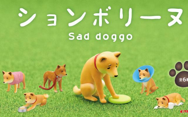 """ឆ្កែ Shiba ស្រងូតស្រងាត់មិនសប្បាយចិត្ត – របស់លេង """"down-mood"""" ដ៏គួរអោយស្រលាញ់"""